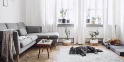 Apartment Checklist Questions